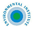 Logo & Website Environmental institute, Slovak Republic